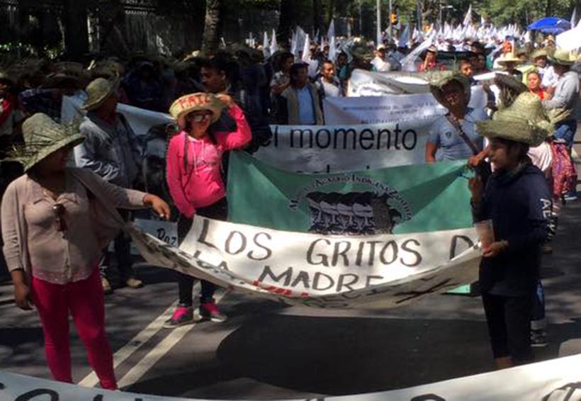 Denuncian intimidación contra líder de la organización MAIZ en la Mixteca | El Imparcial de Oaxaca