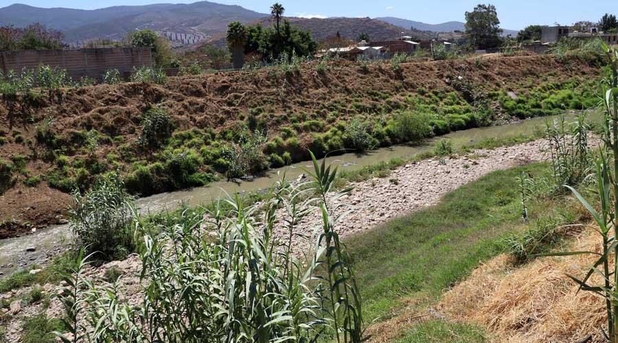Insuficientes los tequios para sanear ríos: Litigio Estratégico | El Imparcial de Oaxaca