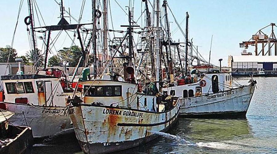 Termina la mala temporada de pesca en el Istmo | El Imparcial de Oaxaca