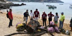Limpian playas y calles de Pochutla