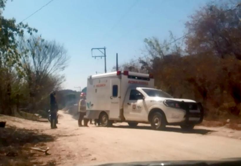 Atacan abejas a vecinos  de Santa María Huatulco | El Imparcial de Oaxaca
