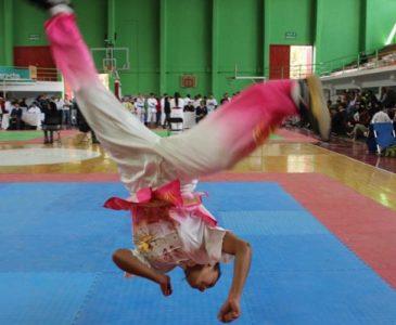Celebrarán primer torneo oaxaqueño de Wushu