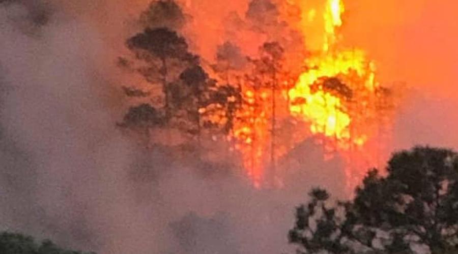 Arde Oaxaca; 12 incendios afectan la Costa, Istmo y Mixteca | El Imparcial de Oaxaca