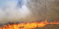 Persisten los incendios forestales en la Costa de Oaxaca