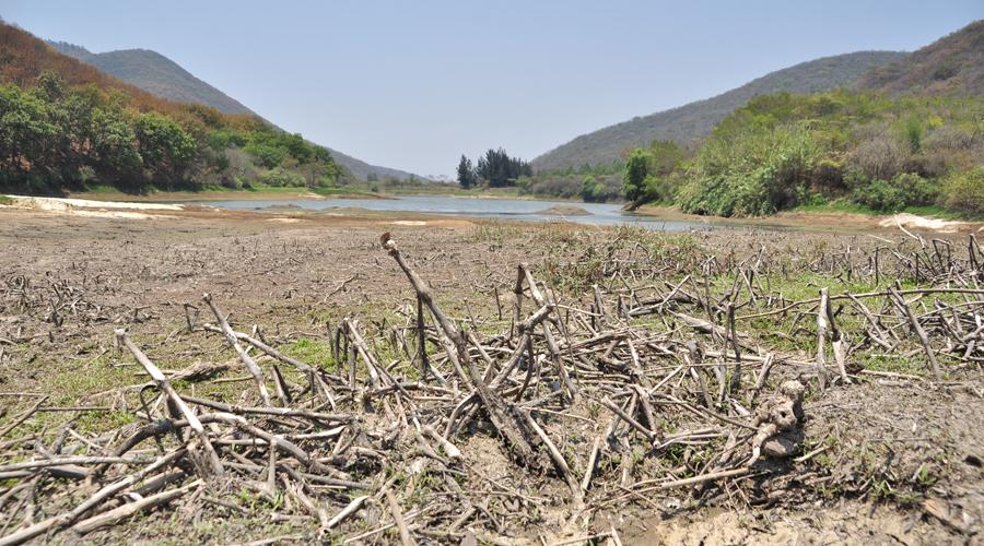 Amenaza la sequía a poblaciones de Oaxaca