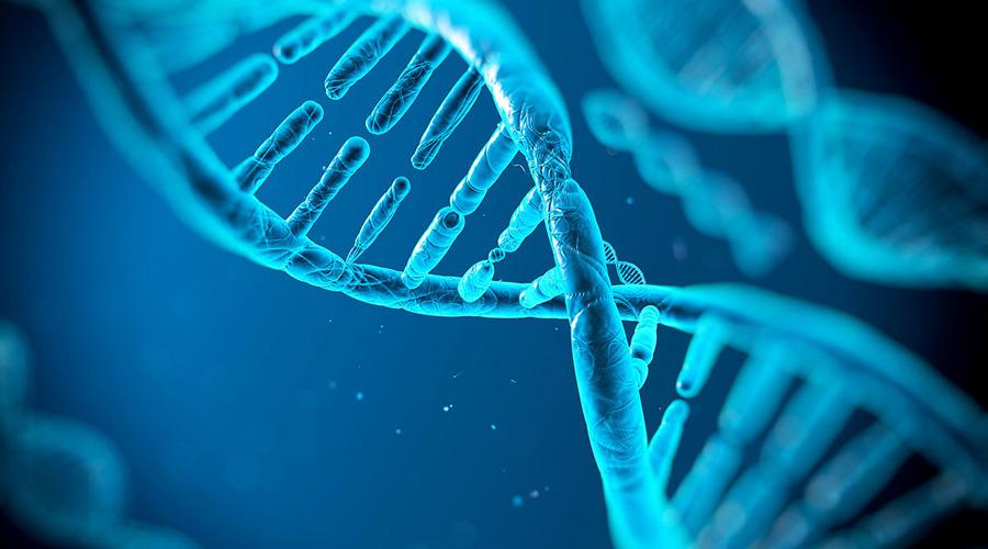 Técnica del silenciamiento de genes coadyuva con la medicina | El Imparcial de Oaxaca