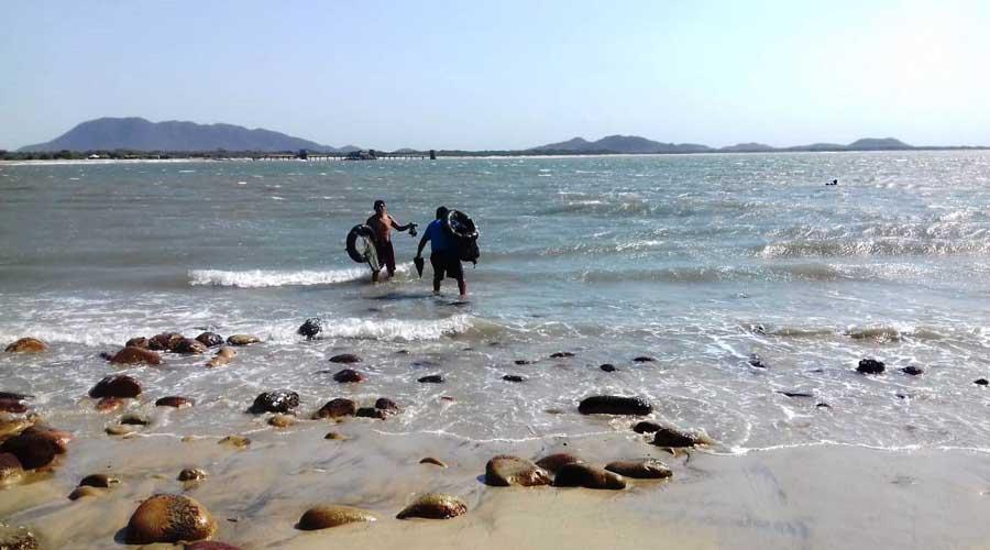 Celebrarán el Día del Ostionero en la Costa de Oaxaca