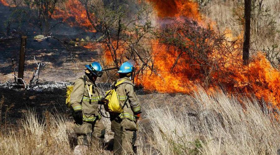Reporta Protección Civil 79 incendios activos en el país | El Imparcial de Oaxaca