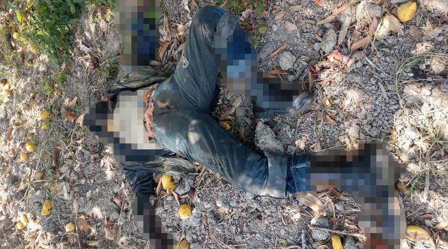 Encuentran cadáver en descomposición en campos de San Pedro Tapanatepec   El Imparcial de Oaxaca