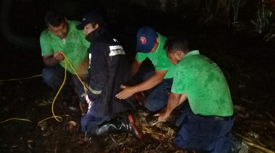 Atrapan un cocodrilo en colonia de Puerto Escondido