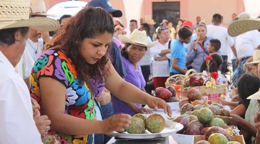 Baja en la Mixteca el 50%  de la producción de pitaya