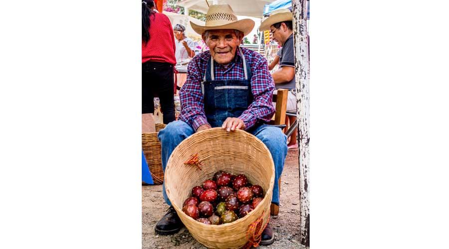 Campesinos pitayeros:  los guardianes del  oro rojo del desierto