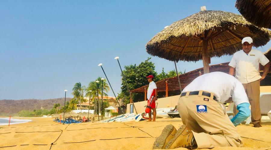 Playas oaxaqueñas obtienen certificación Blue Flag | El Imparcial de Oaxaca