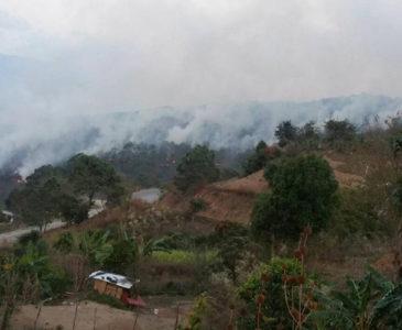 Oaxaca, el estado más afectado por incendios en todo el país