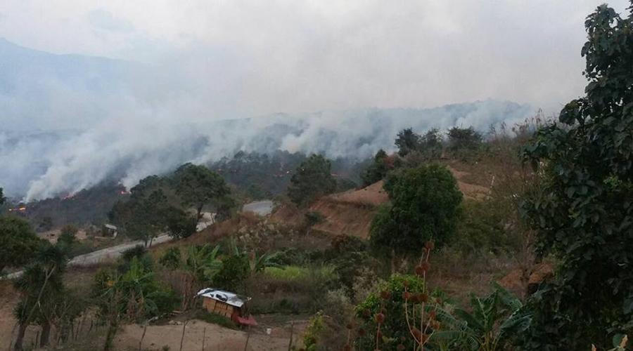 Oaxaca, el estado más afectado por incendios en todo el país | El Imparcial de Oaxaca
