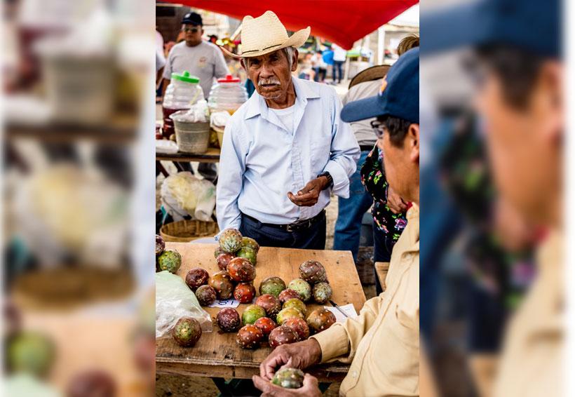 Campesinos pitayeros: los guardianes del oro rojo del desierto II