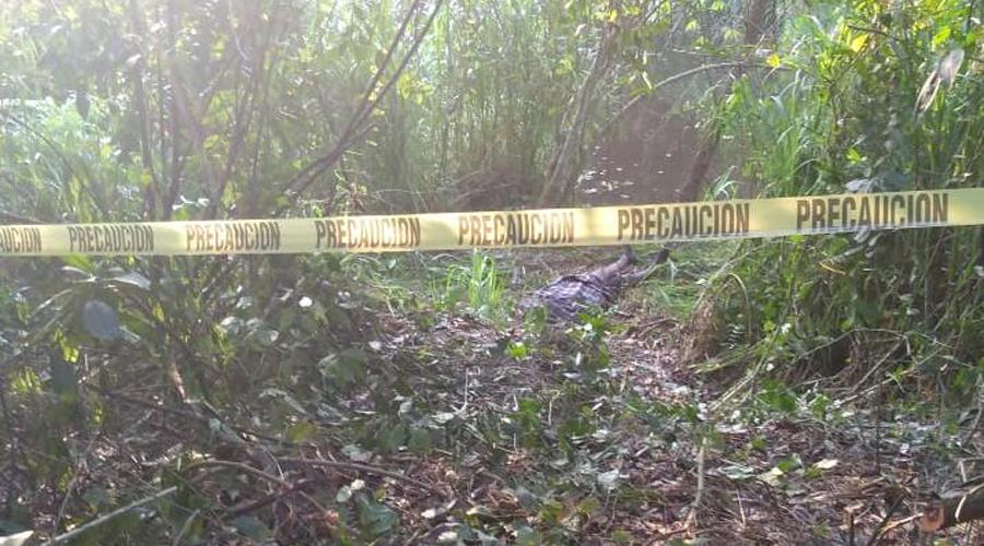 Hallan muertos a dos hombres que salieron a pescar | El Imparcial de Oaxaca