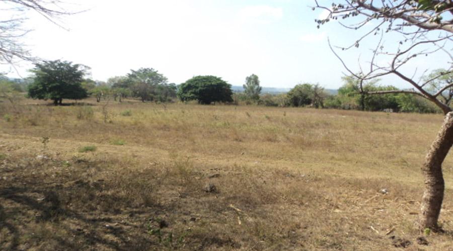 Preocupa a campesinos de Salina Cruz la ausencia de lluvias