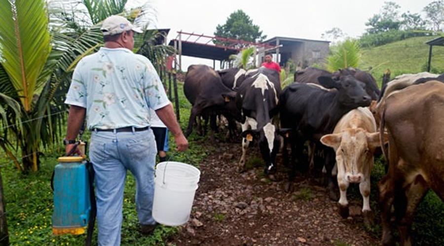 Promueven desarrollo  económico en la Mixteca de Oaxaca