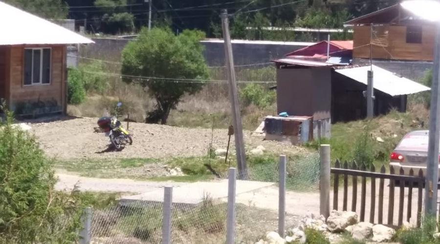 Abejas atacan a menor en Tlaxiaco | El Imparcial de Oaxaca
