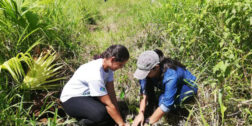 Ofrecen taller de reforestación en Tuxtepec