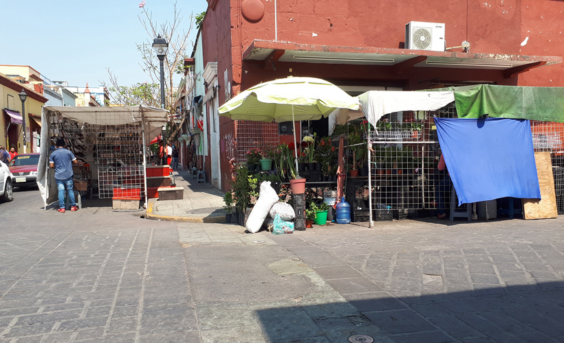 Informalidad, la punta del iceberg en Oaxaca | El Imparcial de Oaxaca