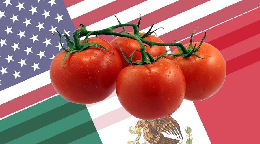 "Tomateros mexicanos pagan ""cuota compensatoria"" para exportar a EU | El Imparcial de Oaxaca"