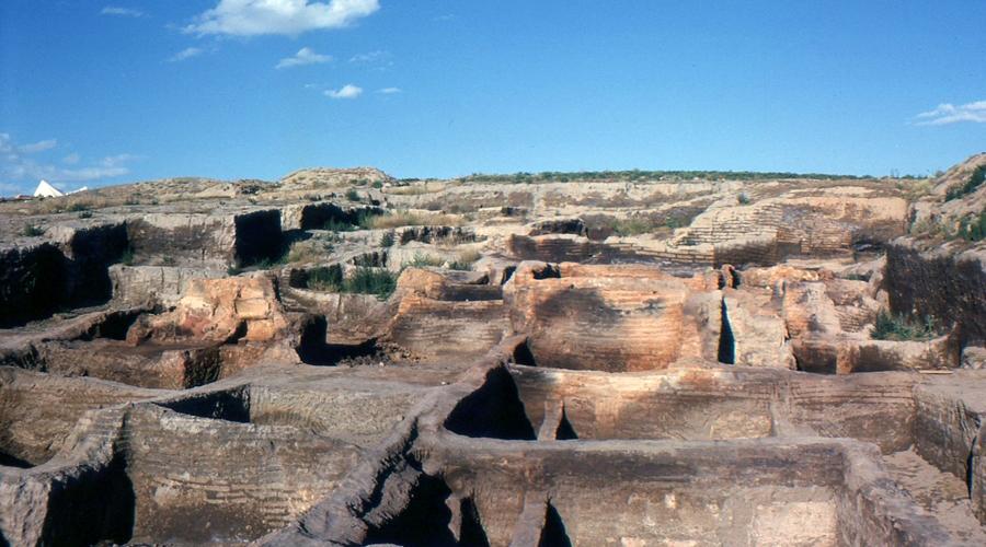 El estudio de excrementos fosilizados y cómo ayuda a comprender civilizaciones antiguas | El Imparcial de Oaxaca