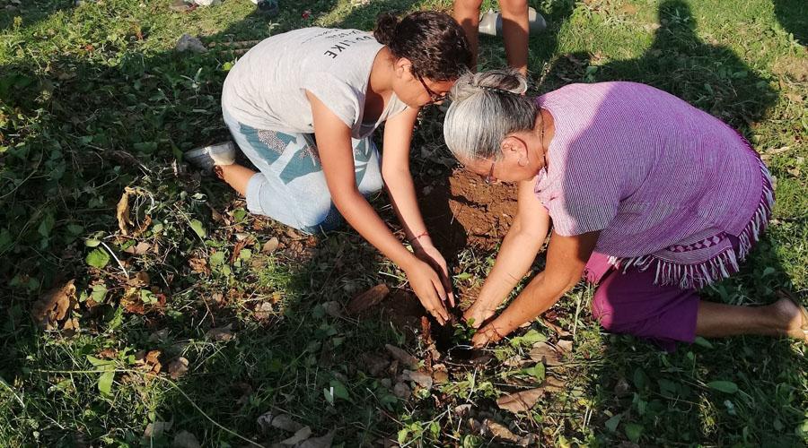 Suma Matías Romero acciones a favor del ambiente | El Imparcial de Oaxaca