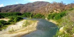 Convocan a reforestar  el Río Copalita