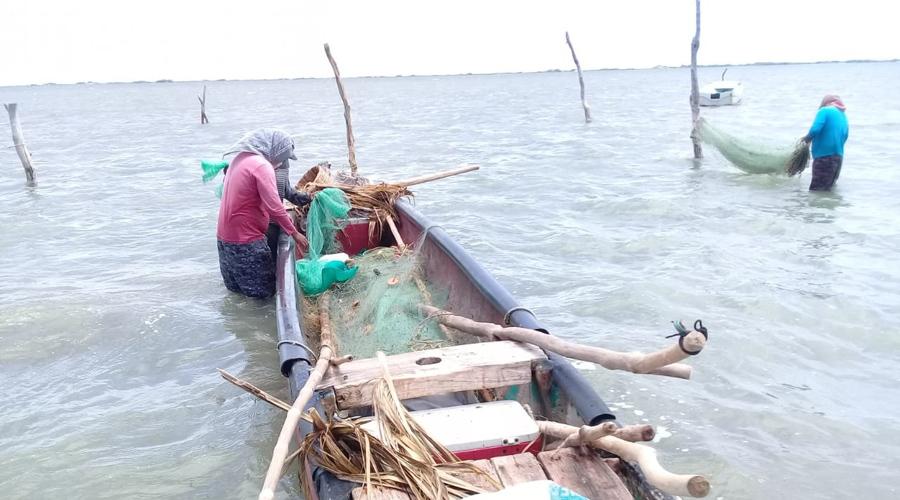 Denuncian pescadores del Istmo falta de apoyo gubernamental | El Imparcial de Oaxaca