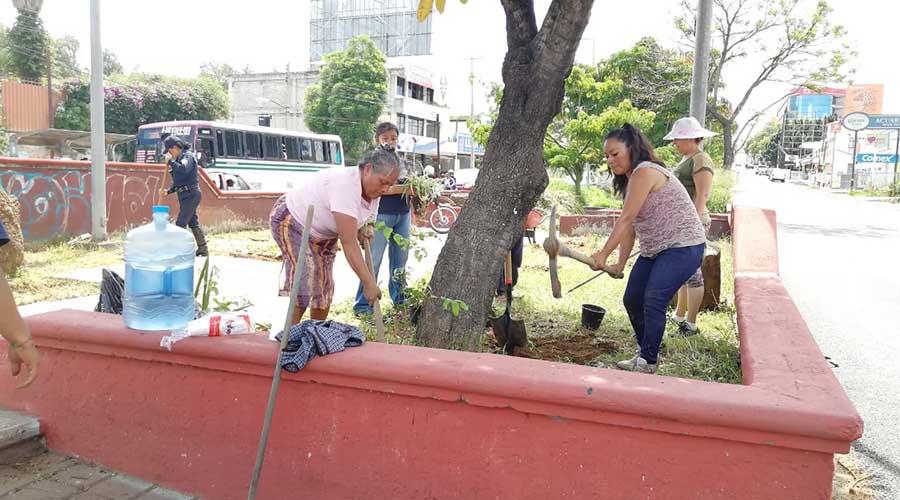 Se unen vecinos para  realizar tequio en  Santa Lucía del Camino