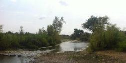 Preocupa contaminación de ríos en la región del Istmo
