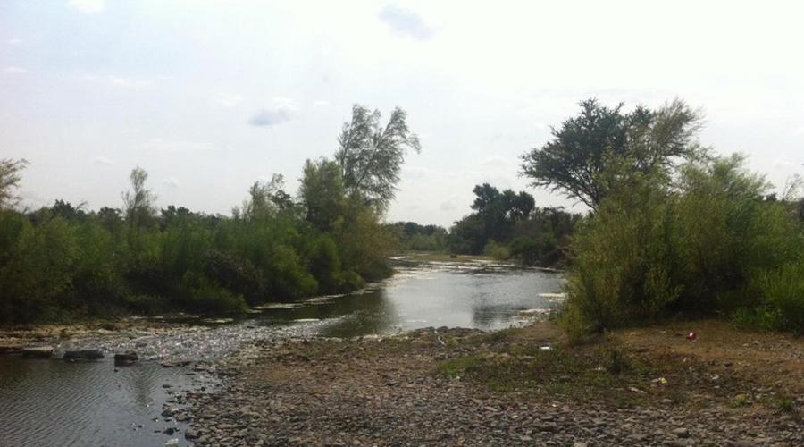 Preocupa contaminación de ríos en la región del Istmo | El Imparcial de Oaxaca