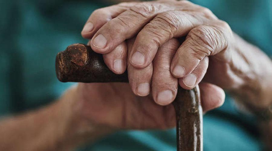 Oaxaca, sede del Congreso  sobre vejez y envejecimiento | El Imparcial de Oaxaca