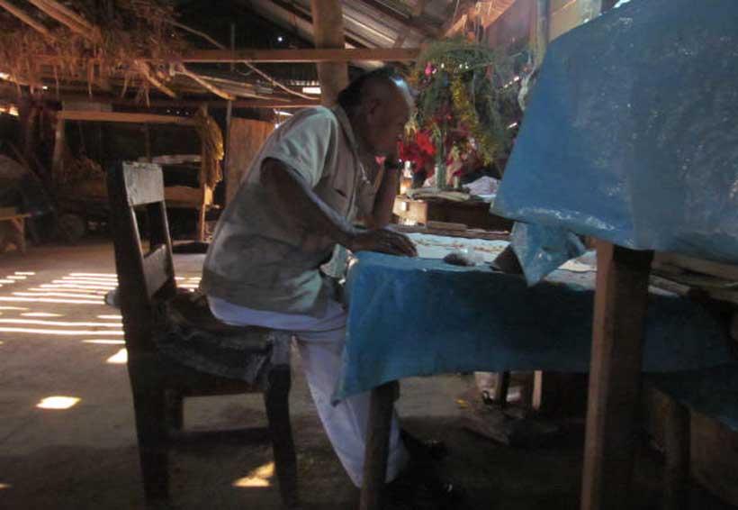 Inicia temporada de hongos alucinógenos en zona Mazateca