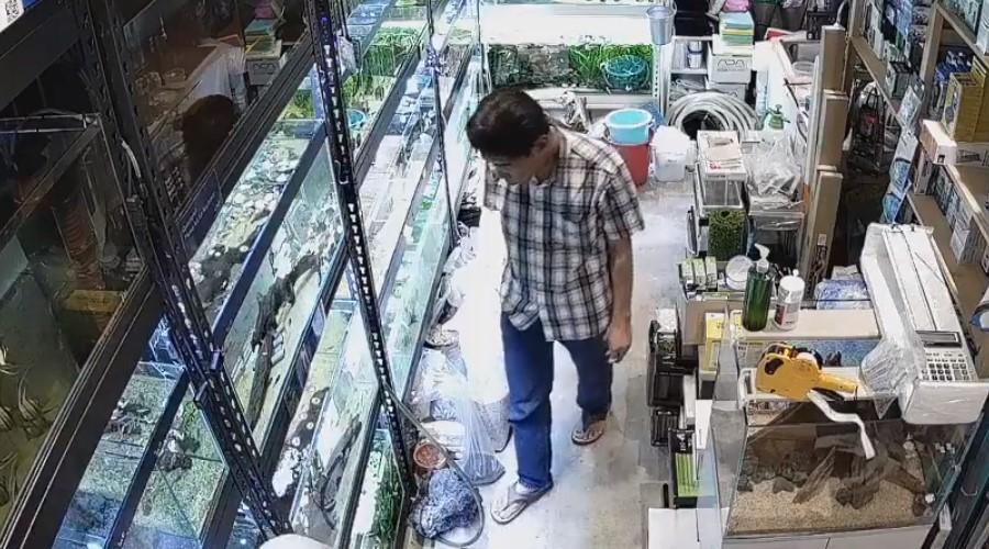 Video: Hombre envenena peces en un tienda de mascotas | El Imparcial de Oaxaca