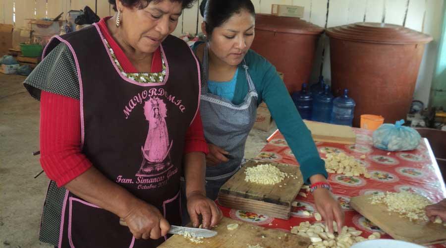 Trabajadoras domésticas de Oaxaca, entre la desigualdad  y explotación laboral