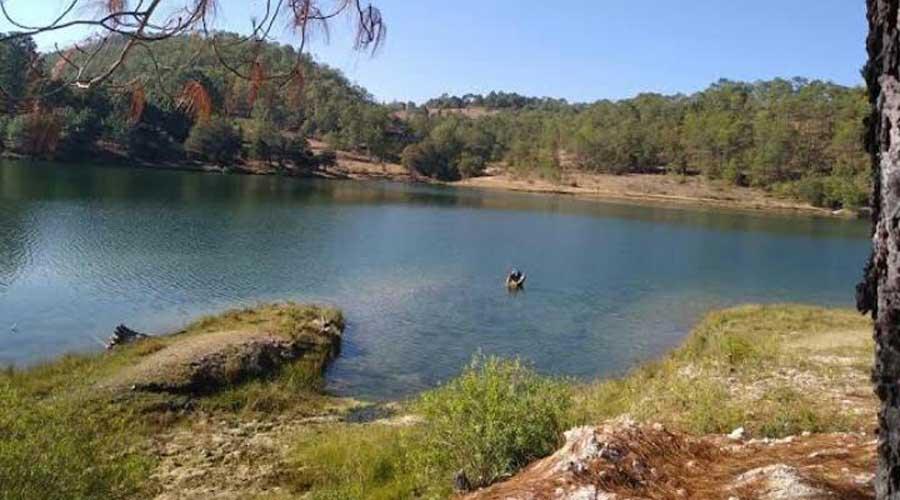 Flota muerto en la presa del Boquerón en Tlaxiaco