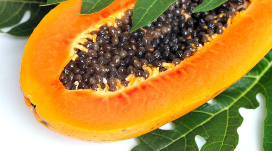 Conoce los múltiples beneficios y propiedades de la papaya para el cuerpo | El Imparcial de Oaxaca