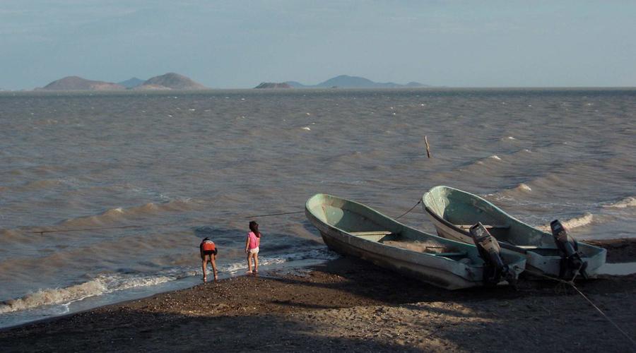 Sargazo llega a playas del Istmo; habitantes exigen acción del gobierno   El Imparcial de Oaxaca