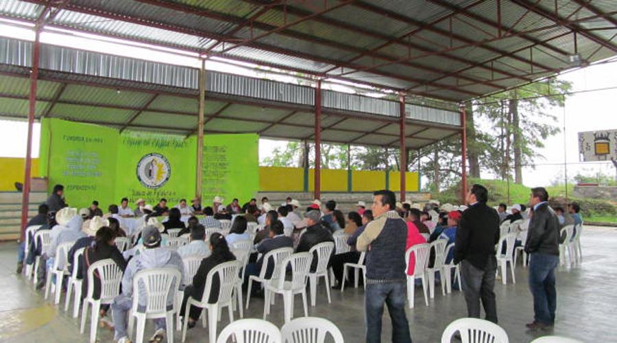 Invitan a la Expo de Azúcar Artesanal en la agencia de El Camarón, Huautepec   El Imparcial de Oaxaca
