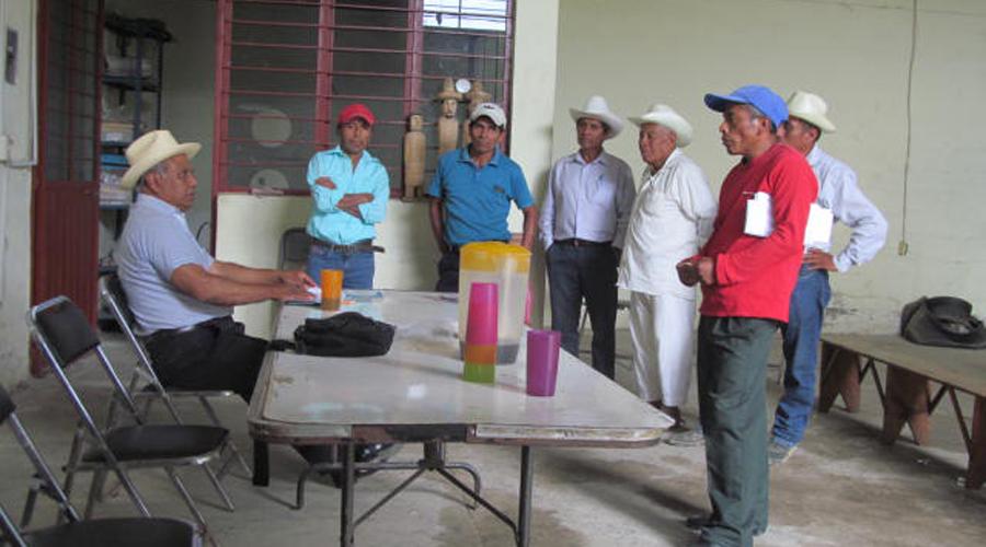 Cafeticultores mazatecos piden sistema de captación de lluvias | El Imparcial de Oaxaca