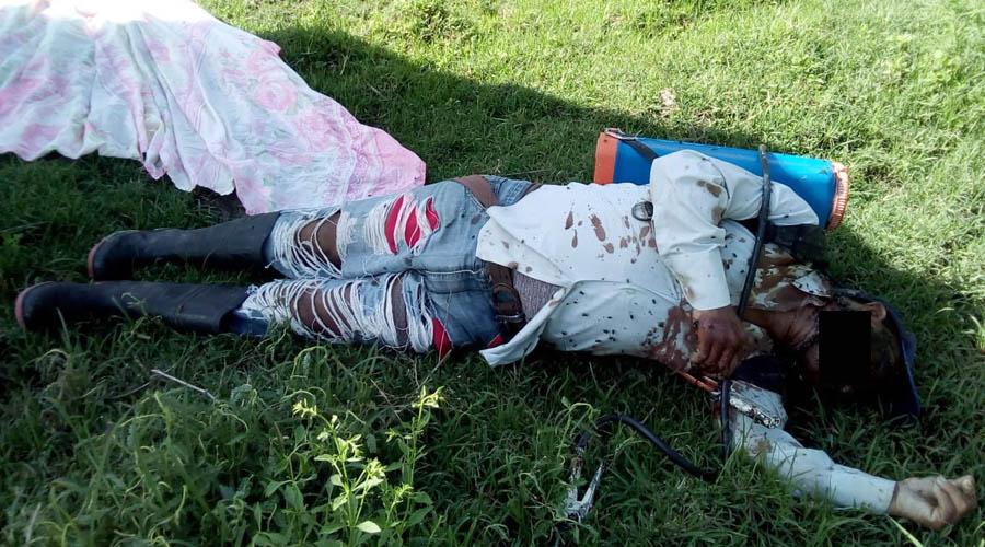 Asesinan a campesino en Pinotepa Nacional, Oaxaca | El Imparcial de Oaxaca