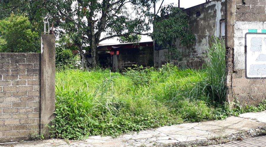 En Tuxtepec, previene Jurisdicción Sanitaria transmisión de enfermedades | El Imparcial de Oaxaca