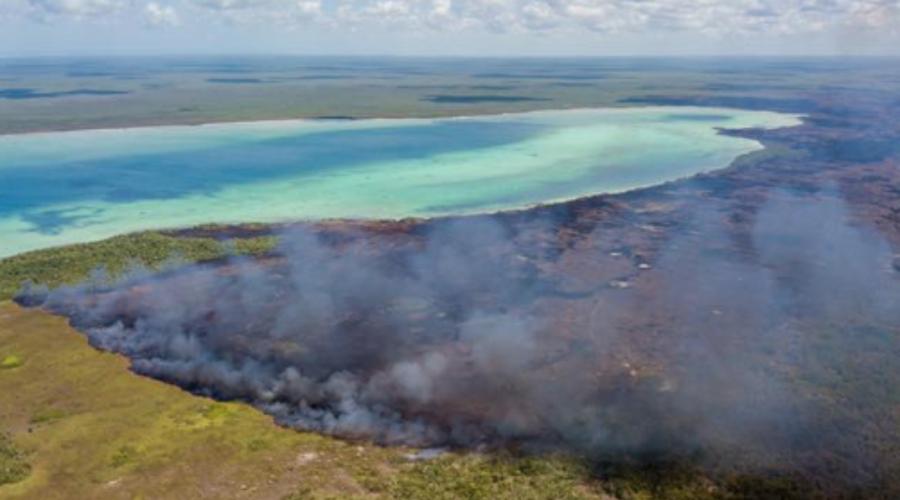 Incendios podrían amenazar Sian Ka'an, área natural Patrimonio de la Humanidad   El Imparcial de Oaxaca
