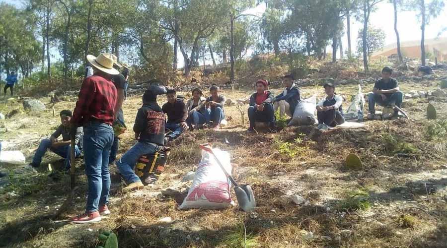 Van por el cultivo del  nopal en la Mixteca  desde el ITSMIGRA