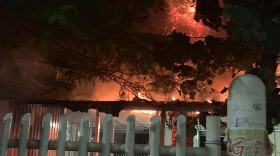 Arden caseta y palmera en Ciudad Universitaria