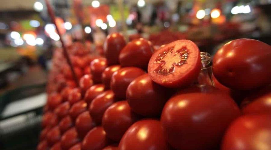 Caen negociaciones, EU no quita aranceles a tomate mexicano | El Imparcial de Oaxaca