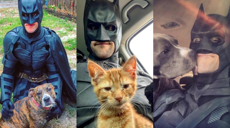 Doble superhéroe: disfrazado de Batman, rescata animales para darlos en adopción | El Imparcial de Oaxaca
